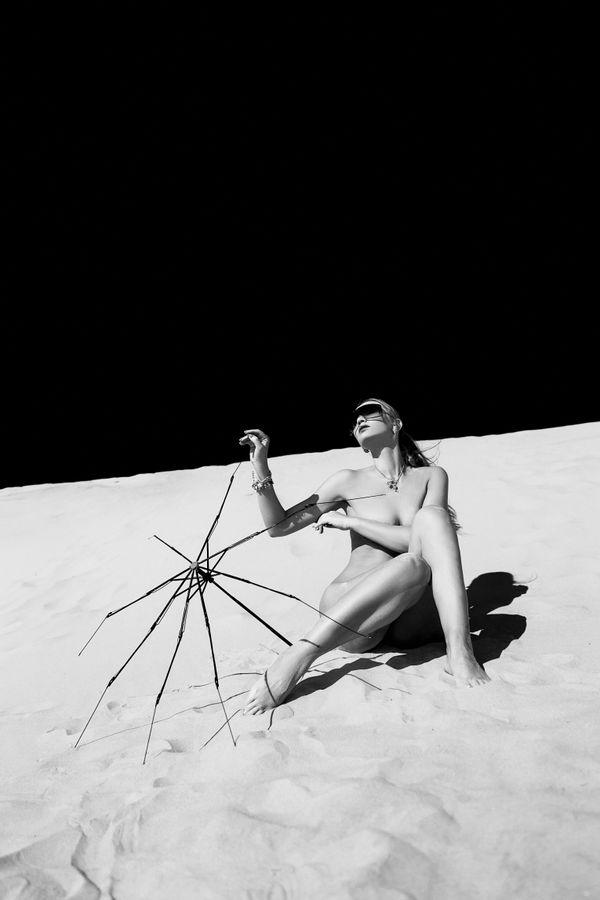 The Moon Explorer