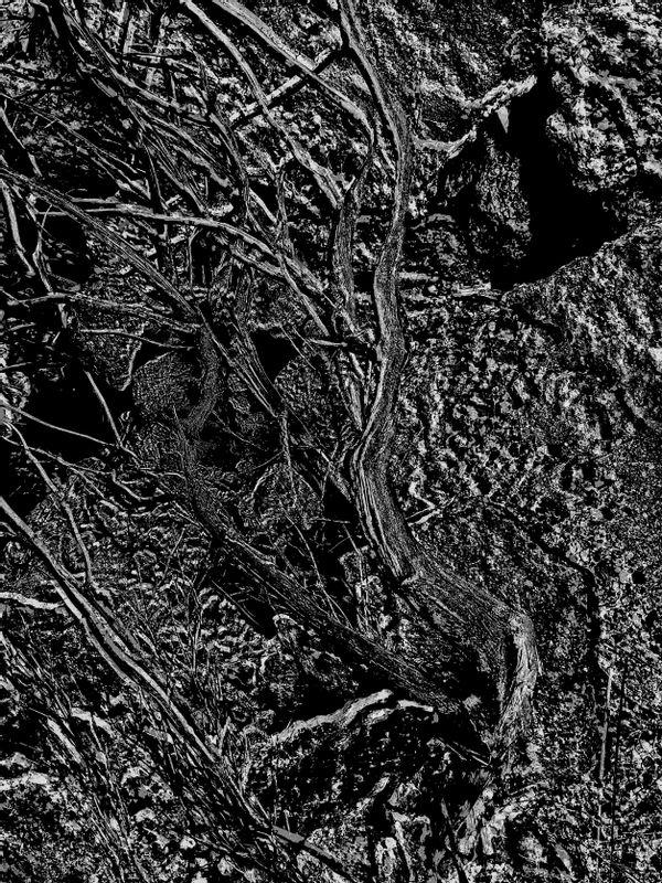 Subterranean_conversation_exposed_3_3