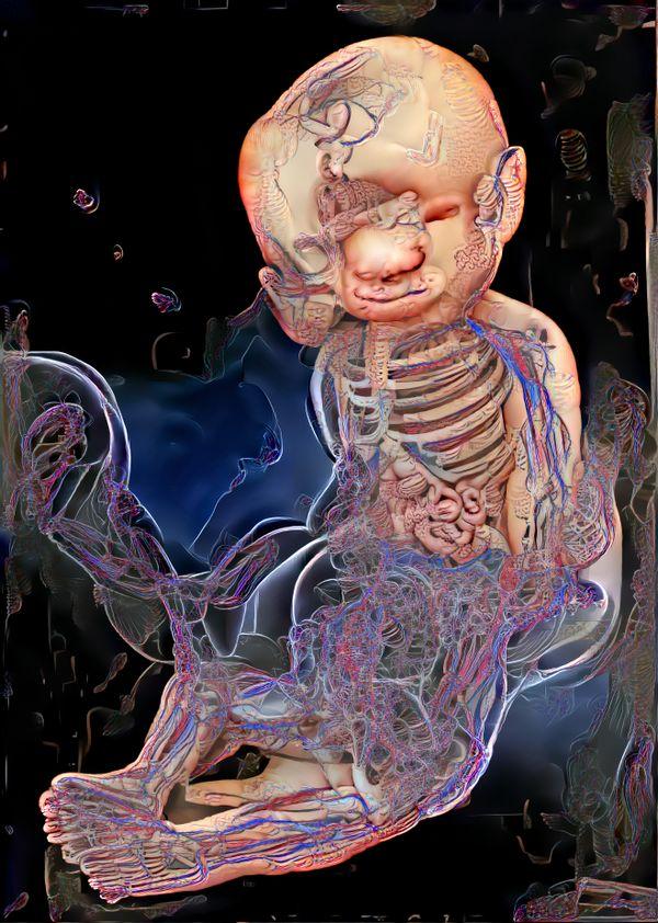 Anatomical_003