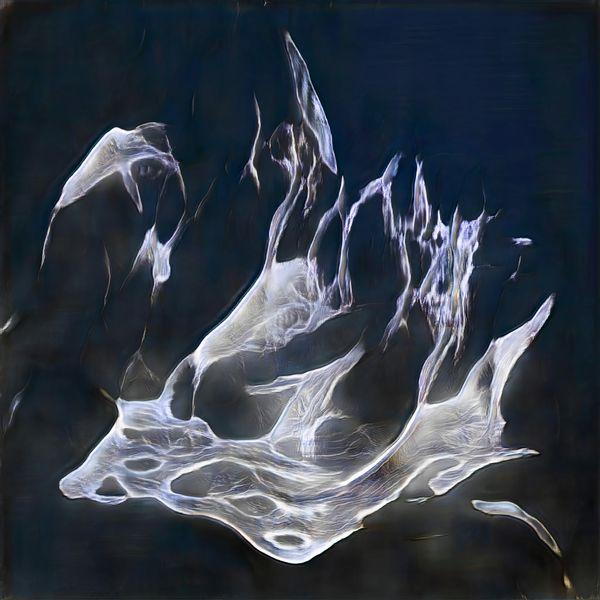 Plasma of Dance
